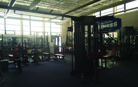 Gym Like No Other: The benefits of the Fitness Center