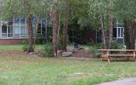 Courtyard Courtship