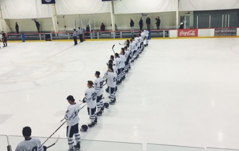 The Road to the Garden Continues: Boys Hockey Update