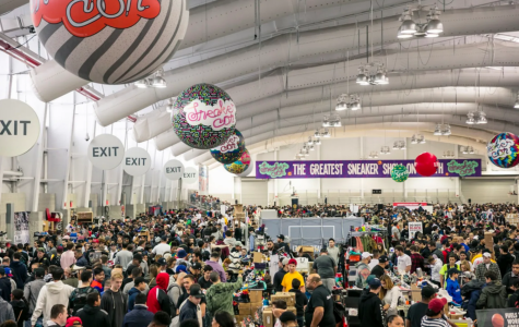 Sneakerheads convene at Sneakerhead Convention