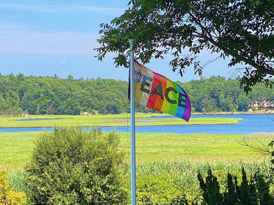 A Look Into the Rainbow Peace Flag Project
